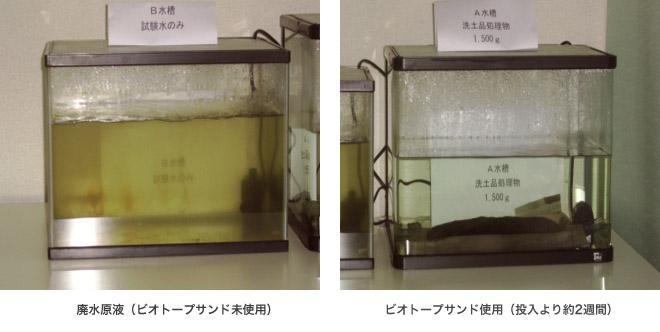 水質浄化実験の様子
