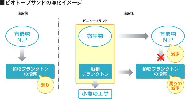 池の浄化システムフロー図
